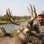 245_41214_Tim Wells Mule Deer-300x200